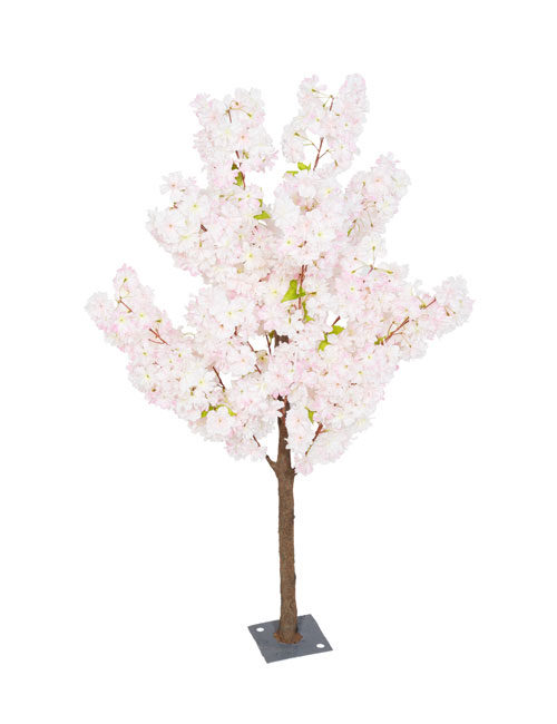 Pink Blossom 1.4m